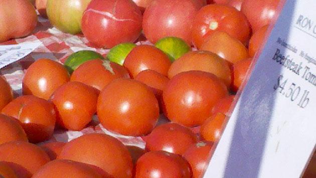 tomatoes-img_20101016_09364