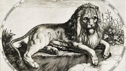 lion-block-111220