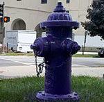 purple-hydrant-150sqimg_201