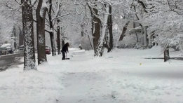 snow-2012-12-28_09-31-15_252