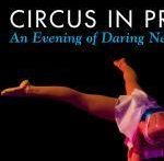 circus-in-p