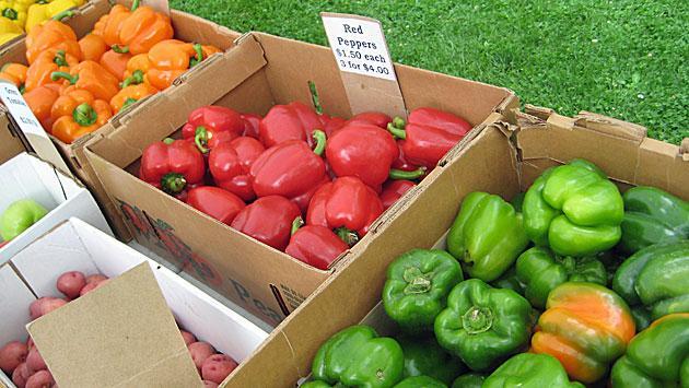 ridgeville-peppers-img_0344
