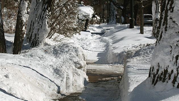 snow-sidewalk-150202-img_4777