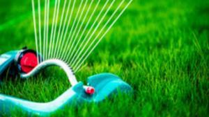 lawn_watering