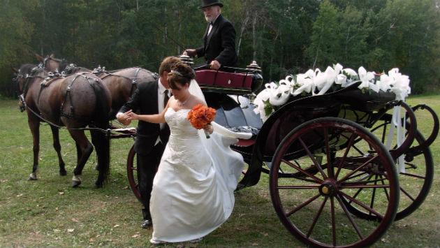 weddingcarriage-wikipedia-171205