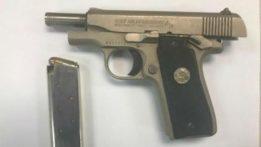 gun_buyback_30may18